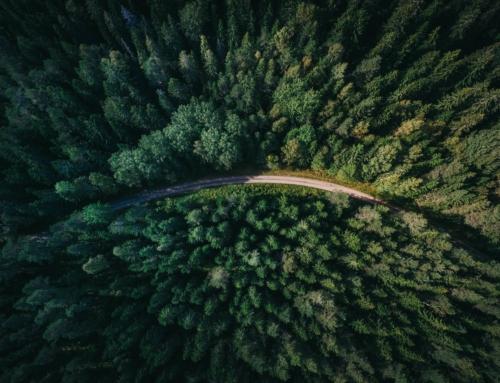 Handbok för klimatsmart offentlig upphandling